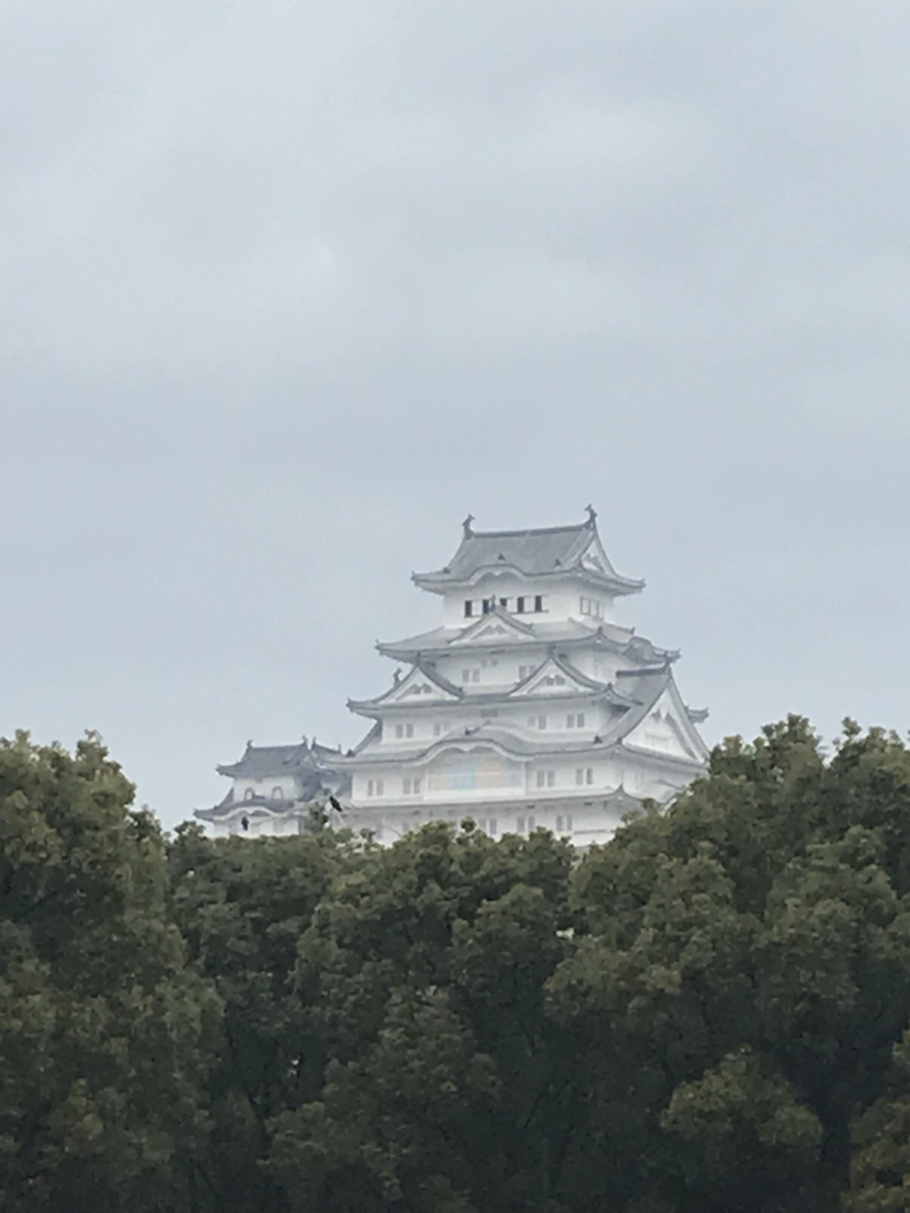 ARアプリも楽しめる国宝姫路城、動物園も併設@兵庫